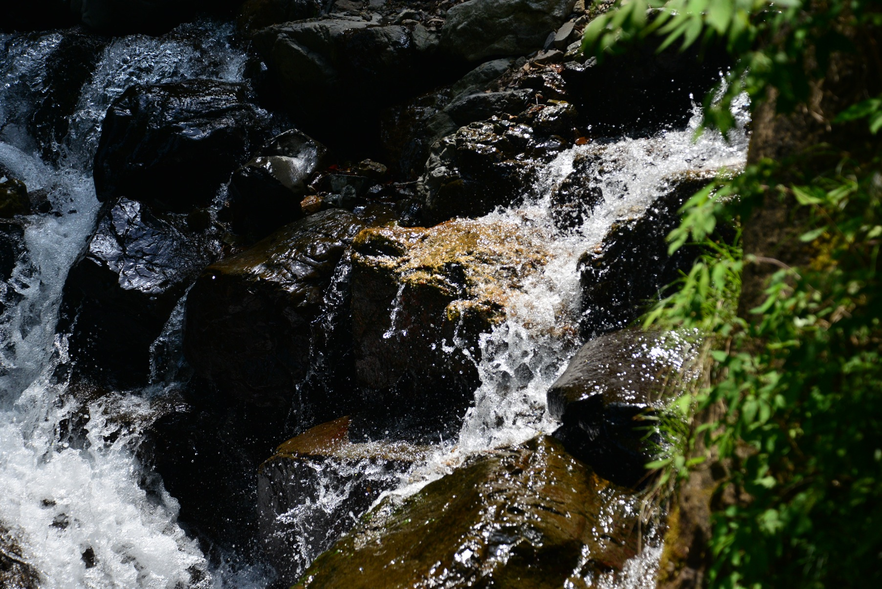 水を考察する「本当に良い水とは」